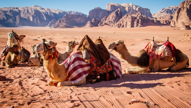 Wadi Rum (Bild: ©LindaPhotography - stock.adobe.com)