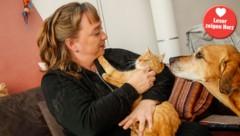 Natascha krault Garfield, Zeus will auch Streicheleinheiten (Bild: Markus Tschepp)