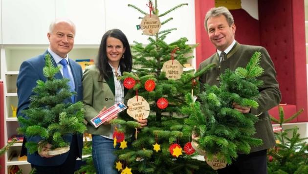 Heimische Natur-Weihnachtsbäume sind klimafreundlich: Präsident Franz Titschenbacher (r.), Christbaum-Bauern-Obfrau Martina Lienhart (mitte) und Landesrat Johann Seitinger (l.) (Bild: Alexander Danner)