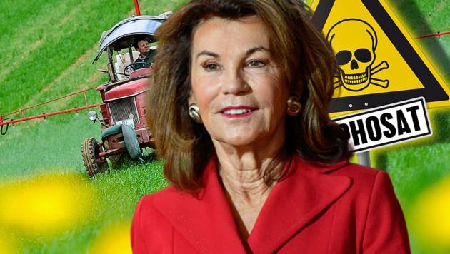 Warum zögert Kanzlerin Brigitte Bierlein bei der Umsetzung des Glyphosat-Verbots? (Bild: APA/AFP/John THYS, APA/dpa, stock.adobe.com, krone.at-Grafik)