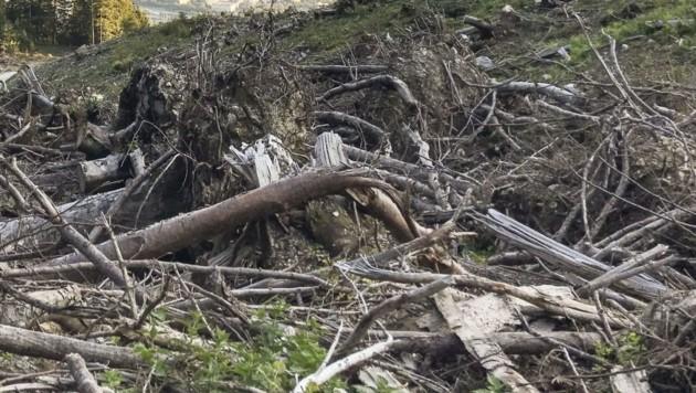 Der Baum am Wegesrand verhinderte Schlimmeres. (Symbolbild) (Bild: LK Tirol )