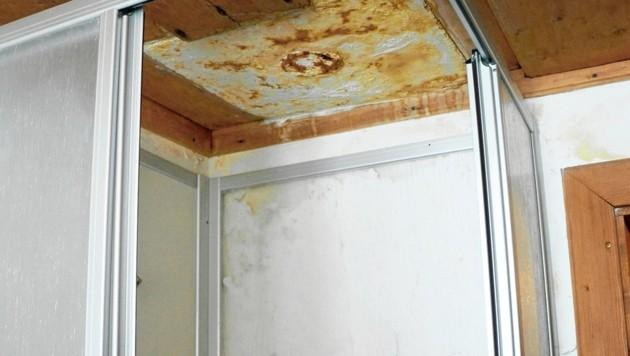 So kann doch niemand leben: die Dusche - ohne Warmwasser! Dafür mit Schimmel. (Bild: Claudia Fulterer)