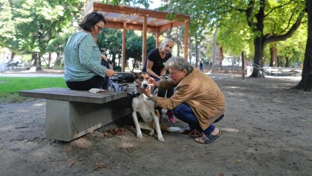 Viel G'spia fürs Tier: Problemlösungen werden gemeinsam erarbeitet und Tierhalter bei der Umsetzung unterstützt. (Bild: Gerhard Bartel)