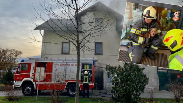 Brand in Werkstatt, Tiere wurden gerettet. (Bild: Markus Tschepp)