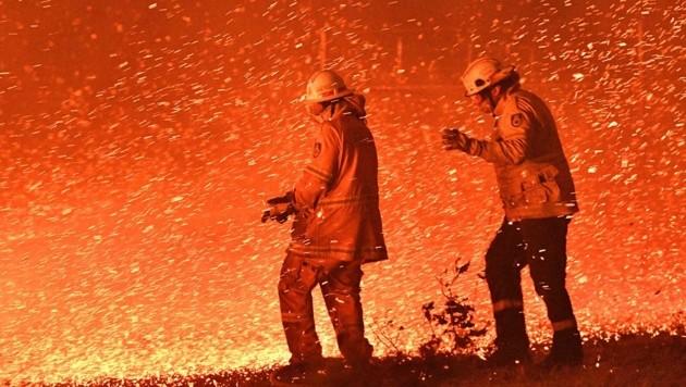 Feuerwehrmänner in Sydney im Kampf gegen das Buschfeuer (Bild: APA/AFP/SAEED KHAN)