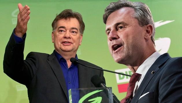 FPÖ-Chef Norbert Hofer ist seit der Einigung von Grünen-Chef Werner Kogler mit ÖVP-Obmann Sebastian Kurz im Angriffsmodus. (Bild: AP, EPA, krone.at-Grafik)