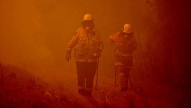 Der Klimawandel hat in Australien großflächige Brände ausgelöst. (Bild: APA/AFP/PETER PARKS)