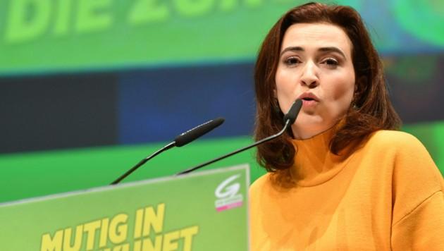 Alma Zadic als Justizministerin? Für die FPÖ vor allem wegen der erstinstanzlichen Verurteilung der grünen Politikerin undenkbar. (Bild: APA/BARBARA GINDL)