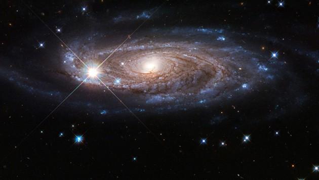 Die Galaxie UGC 2885 ist zweieinhalb Mal so breit wie die Milchstraße und enthält zehn Mal so viele Sterne. (Bild: NASA, ESA und B. Holwerda (University of Louisville))