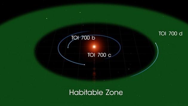 Die Bahnen der drei Exoplaneten um das Zentralgestirn TOI 700 a (TOI 700 d befindet sich in der grün markierten, habitablen Zone) (Bild: NASA)
