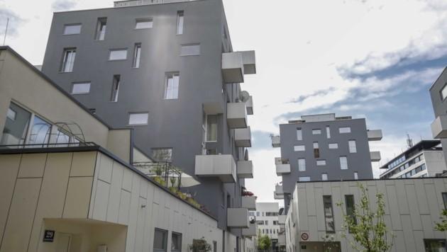 Der Bedarf ist hoch: Salzburg setzt auf soziale Wohnungen (Bild: Tschepp Markus)