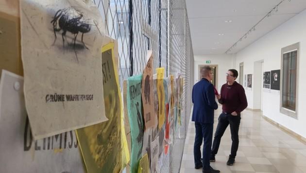 """Die """"Grüne Waffenfliege"""" lässt Rudi Anschober in Linz zurück... (Bild: Werner Pöchinger)"""
