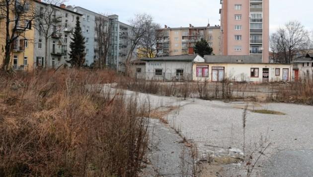 ....sieht man nun ein Baustellenareal (Bild: Christian Jauschowetz)