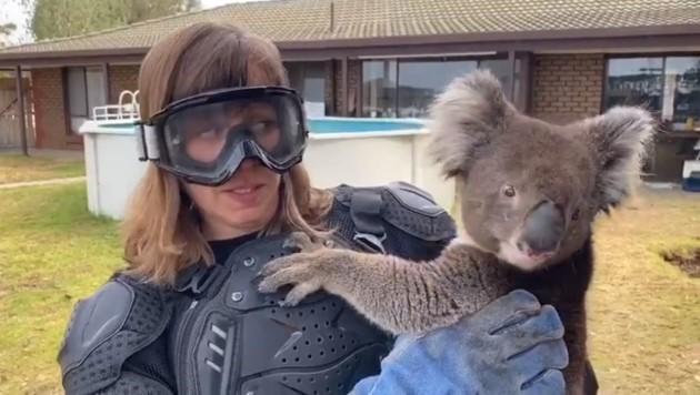 Die schottische Reporterin macht einen sichtlich verängstigten Gesichtsausdruck, während sie den vermeintlich gefährlichen Koala im Arm hält. (Bild: Quelle: Video-Screenshot Sean Mulcahy)