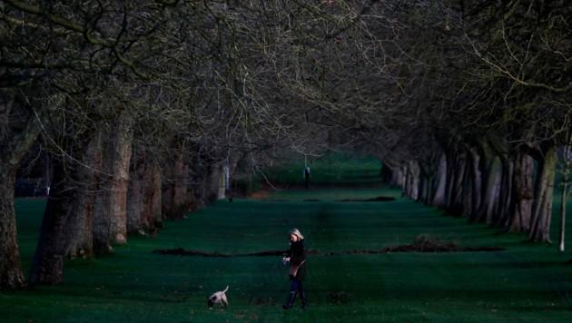 Eine Frau geht in der Nähe von Schloss Windsor mit ihrem Hund Gassi. (Bild: Copyright 2020 The Associated Press. All rights reserved)
