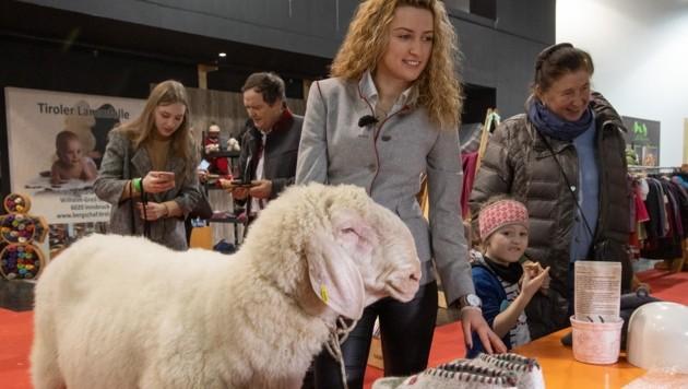 Manche Schafen wagen sogar einen Messe-Rundgang. (Bild: Christian Forcher)