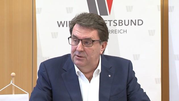 Wirtschaftsbund-NÖ-Obmann Wolfgang Ecker (Bild: krone.tv)