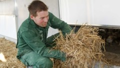 """Bio-Landwirt Robert Strasser: """"Meine Hühner haben es sehr gut bei mir im Stall."""" (Bild: Tschepp Markus)"""