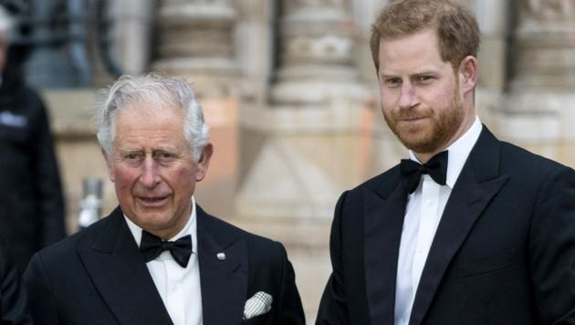 Prince Charles Prinz Harry (Bild: AFP or licensors)
