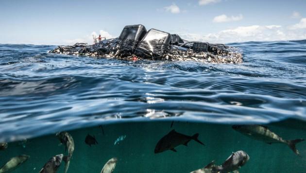 (Bild: © Pierre Baelen/Greenpeace)