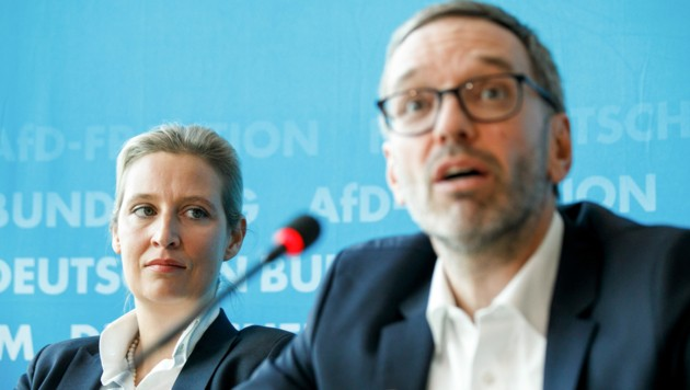 Die AfD-Fraktionsvorsitzende Alice Weidel sieht viele Gemeinsamkeiten mit der FPÖ von Herbert Kickl. (Bild: APA/dpa/Carsten Koall)