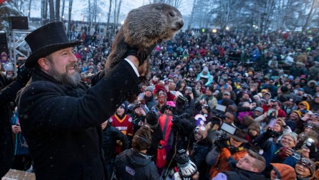 Al Dereume hält Punxsutawney Phil hoch, damit die Tausenden Schaulustigen ihn sehen können. (Bild: APA/AP)