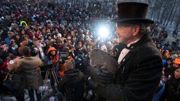 John Griffiths mit Punxsutawney Phil (Bild: APA/AP)