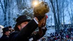Jedes Jahr am 2. Februar wird in Punxsutawney der Murmeltiertag gefeiert. (Bild: 2020 Getty Images)