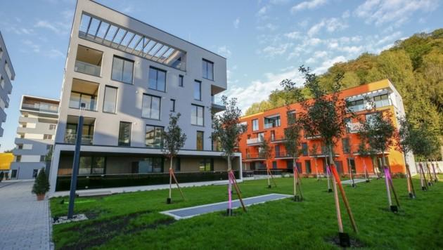 Die Preise pro Quadratmeter liegen in der Stadt Salzburg bei mittlerweile mehr als 15 Euro (Bild: Tschepp Markus)