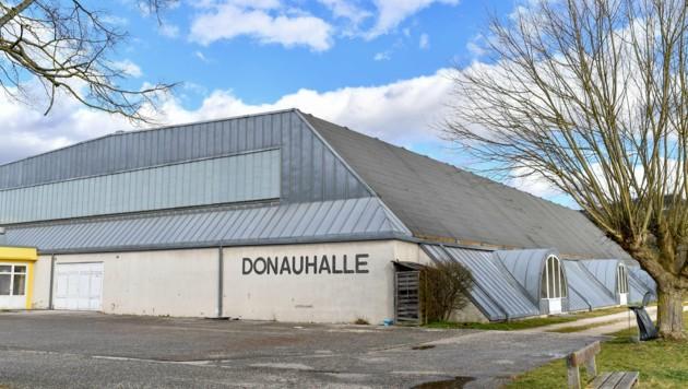 Unerfreuliche Schäden gibt es durch ein undichtes Dach in der Donauhalle Ottensheim (Bild: © Harald Dostal)