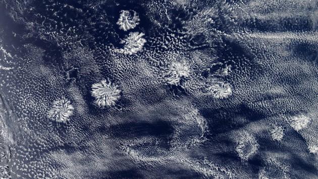 (Bild: NASA Earth Observatory/Joshua Stevens)