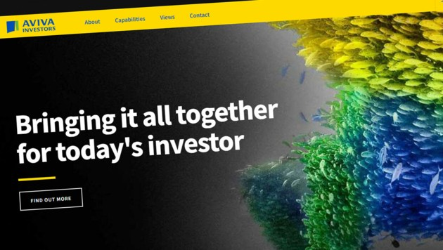 Die Original-Website avivainvestors.com (Bild: avivainvestors.com)