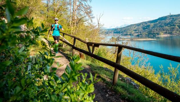 (Bild: Wörthersee Ultra Trail)