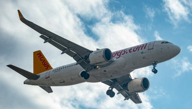 Ein Flugzeug der Pegasus im Landeanflug in Istanbul (Bild: APA/AFP/Yasin AKGUL)