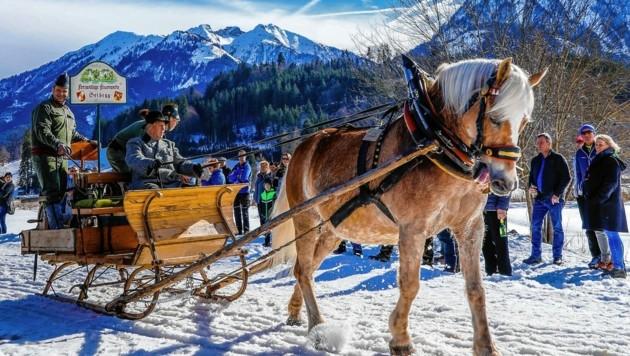 Prachtvolle Pferdeschlitten (Bild: GERHARD SCHIEL)