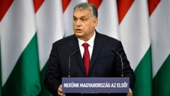 (Bild: Zsolt Szigetvary/MTI via AP)