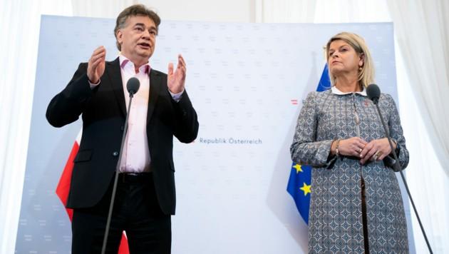 Vizekanzler Werner Kogler (Grüne) und Verteidigungsministerin Klaudia Tanner (ÖVP) (Bild: APA/GEORG HOCHMUTH)
