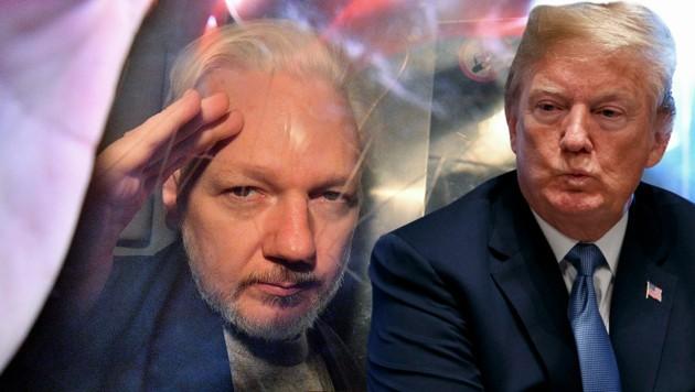 Was steckt hinter dem mutmaßlichen Angebot Trumps an Assange? (Bild: APA/AFP/Daniel Leal-Olivas, AP, krone.at-Grafik)