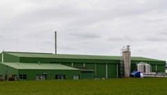 Der Eiverarbeitungsbetrieb in Niederösterreich (Bild: APA/FOTOKERSCHI.AT/KERSCHBAUMMAYR)