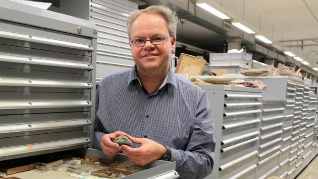 Rainer Schoch vom Naturkundemuseum in Stuttgart hält das 240 Millionen Jahre alte Fossil in Händen. (Bild: Stuttgarter Naturkundemuseum)