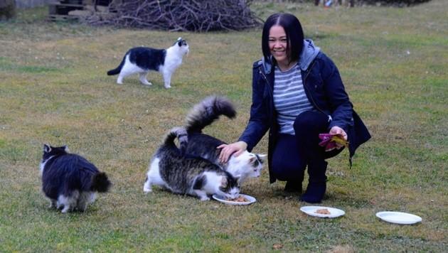 Liebevoll kümmern sich Bettina Zach und ihre Mutter Maria (unten) um zugelaufene Katzen. (Bild: Weber Franz)