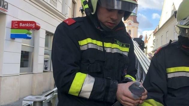 (Bild: Feuerwehr Krems)