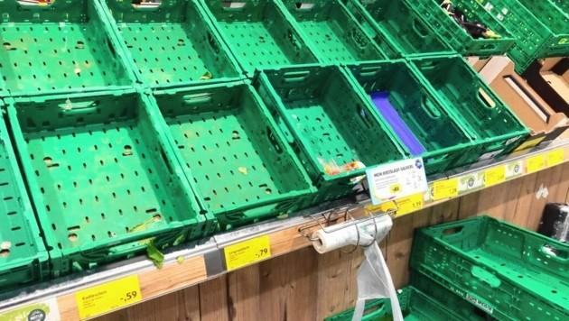Leere Regale in heimischen Supermärkten (Bild: Christian Jauschowetz)