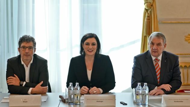 Die neuen Kriterien der türkis-grünen Bundesregierung sollen für mehr Taugliche und auch für mehr Zivildiener sorgen. (Bild: APA/HERBERT NEUBAUER)