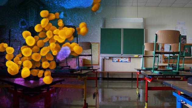 Es geht wieder los, aber Abstand ist auch in der Schule das oberste Gebot. Pro Klasse soll es nun nur noch zwölf Tische geben. (Bild: NIAID-RML, stock.adobe.com, krone.at-Grafik)