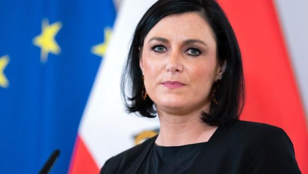 Ministerin Elisabeth Köstinger (Bild: APA/GEORG HOCHMUTH)