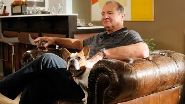 "Ed O'Neill, mit Hund ""Stella"" (Bild: Peter ""Hopper"" Stone / Everett Collection / picturedesk.com)"