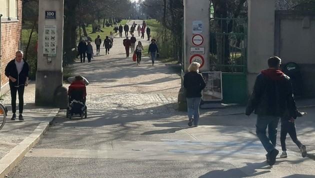 Spaziergänger, aufgenommen am Mittwoch im Erholungsgebiet der Steinhofgründe in Wien (Bild: APA/PETJA MLADENOVA)