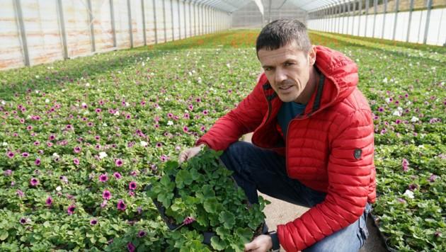 Heiko Lenz aus St. Peter am Ottersbach sitzt auf einer Million Pflanzen! (Bild: Sepp Pail)