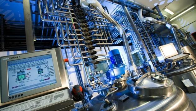 Chemiewerk bei Hagleitner (Bild: Hagleitner)